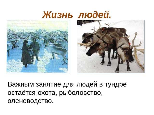 Жизнь людей. Важным занятие для людей в тундре остаётся охота, рыболовство, о...