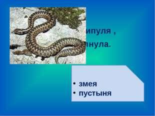 Из куста шипуля , За ногу тяпнула. змея пустыня