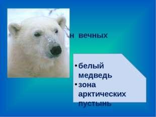 2. Хозяин вечных льдов. белый медведь зона арктических пустынь