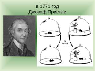 в 1771 год Джозеф Пристли