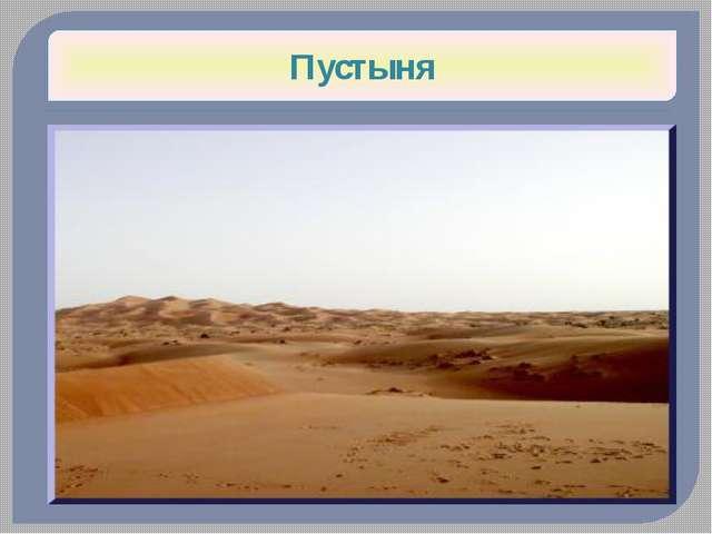 Фенек (Лисьи) Пустыня Сахара Огромные уши служат для теплоотдачи Вернуться на...