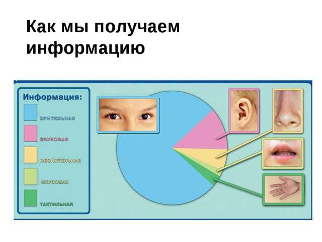 Как мы получаем информацию