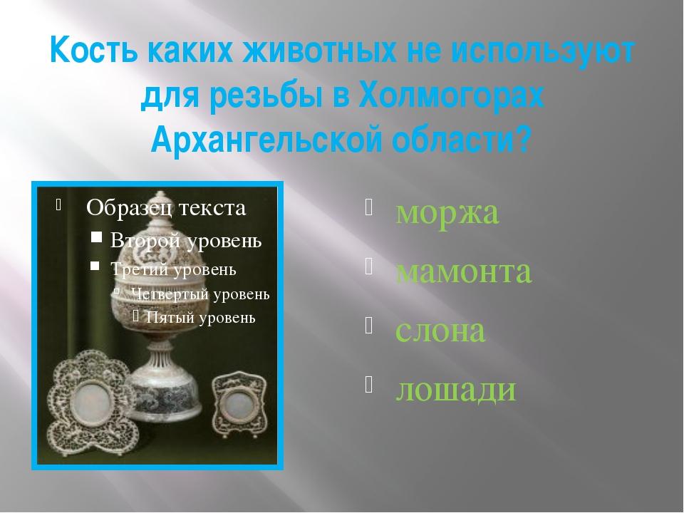 Кость каких животных не используют для резьбы в Холмогорах Архангельской обла...