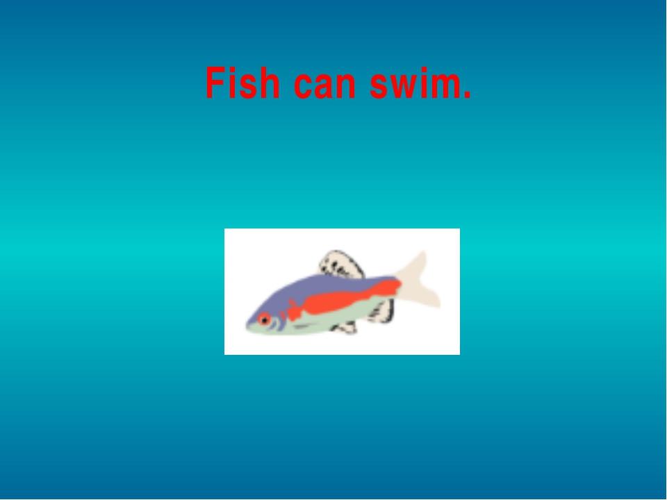 Fish can swim.