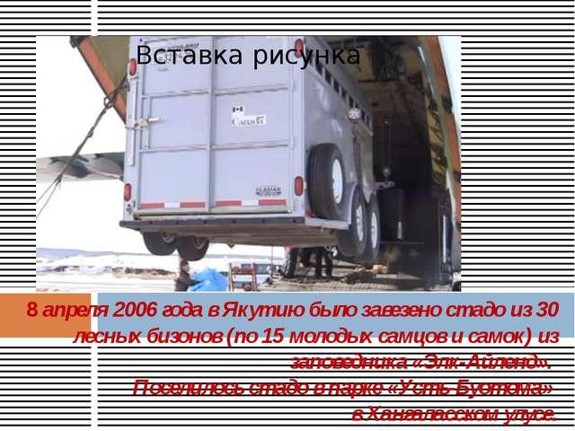 8 апреля 2006 года в Якутию было завезено стадо из 30 лесных бизонов (по 15 м...