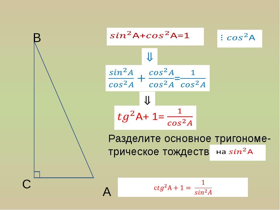 A C B Разделите основное тригономе- трическое тождество