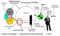 http://im8-tub-ru.yandex.net/i?id=99865255-29-72&n=21