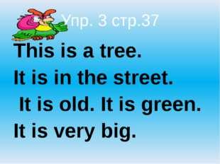 Упр. 3 стр.37 This is a tree.  It is in the street.  It is old. It is gree