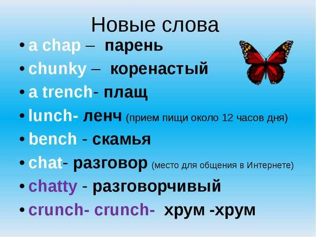 Новые слова  a chap –  парень chunky –  коренастый a trench- плащ lunch-...
