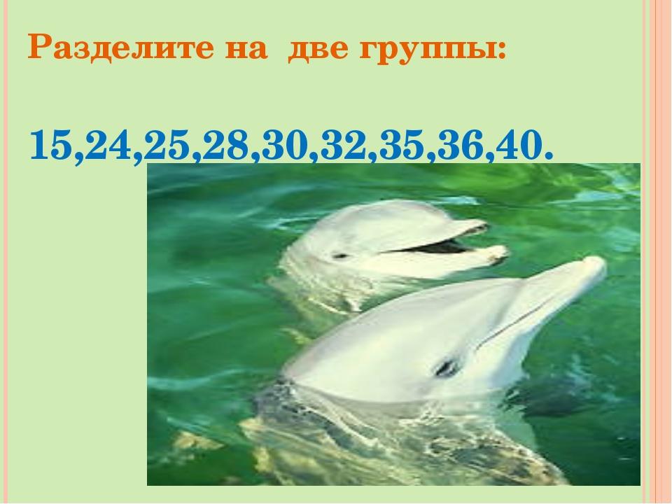 Разделите на две группы: 15,24,25,28,30,32,35,36,40.