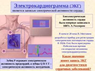 Запись ЭКГ занимает 10-15 минут, затем ее просматривает врач и выдает заключе