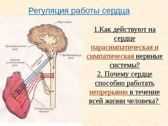 Как химические вещества плазмы влияют на работу сердца? Усиливают: Угнетают:...