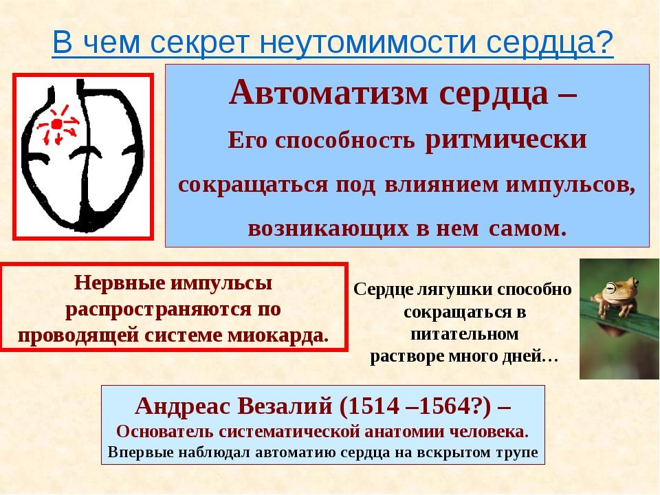 Электрокардиограмма (ЭКГ) является записью электрической активности сердца. Б...