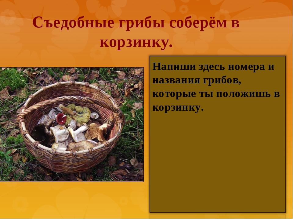Съедобные грибы соберём в корзинку. Напиши здесь номера и названия грибов, ко...