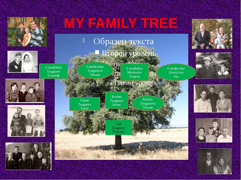 MY FAMILY TREE I am Tyuganov Vladislav Father Tyuganov Pavel Mother Tyuganova...