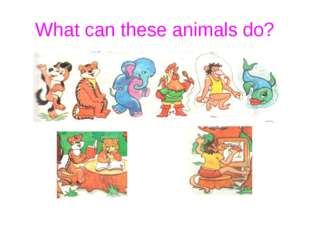 What can these animals do?