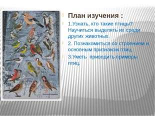 План изучения : 1.Узнать, кто такие птицы? Научиться выделять их среди други
