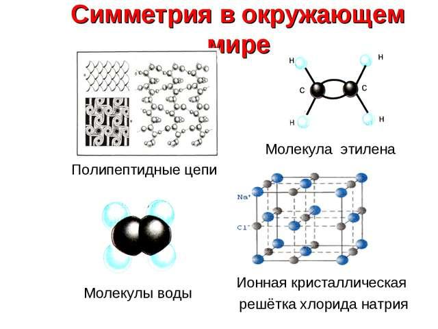 Симметрия в окружающем мире Молекулы воды Молекула этилена Полипептидные цепи...