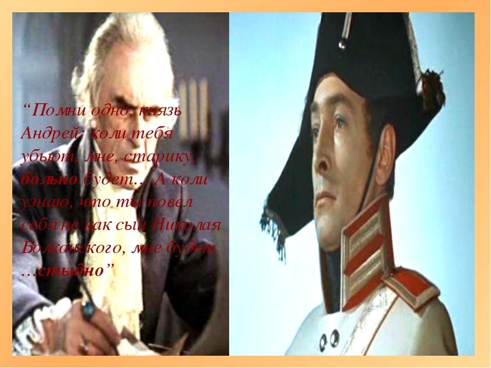 """""""Помни одно, князь Андрей: коли тебя убьют, мне, старику, больно будет… А кол..."""