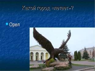 Какой город «летает»? Орел