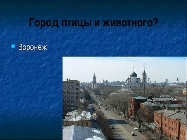 Город птицы и животного? Воронеж