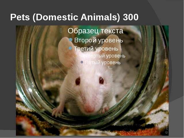 Pets (Domestic Animals) 300