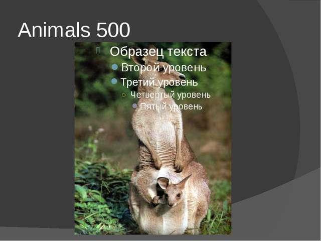 Animals 500