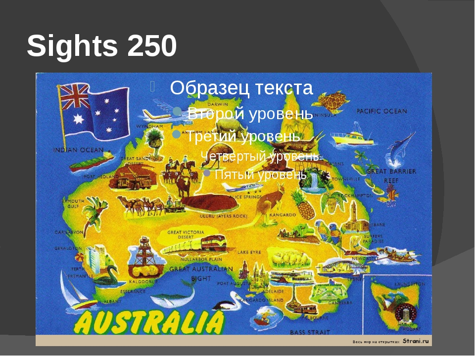 Sights 250