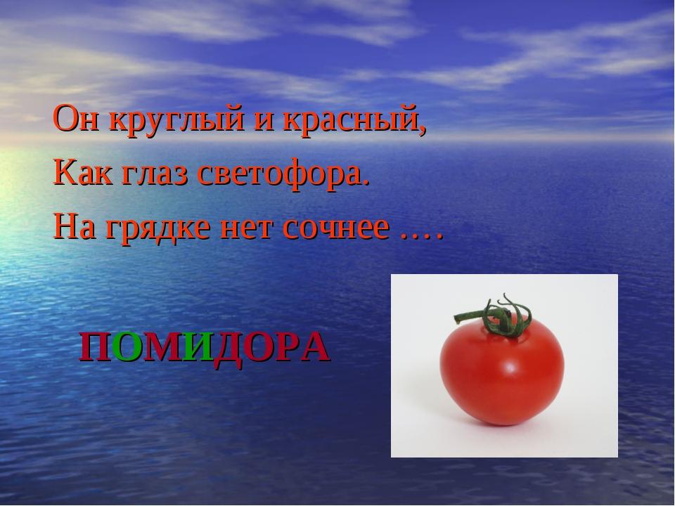 ПОМИДОРА Он круглый и красный, Как глаз светофора. На грядке нет сочнее .…
