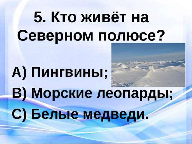 5. Кто живёт на Северном полюсе? Пингвины; Морские леопарды; Белые медведи.
