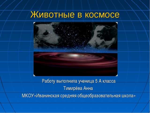 Животные в космосе Работу выполнила ученица 5 А класса Тимирёва Анна МКОУ»Ива...