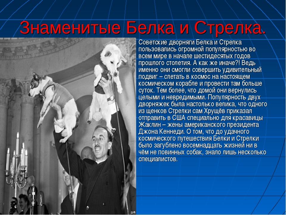 Знаменитые Белка и Стрелка. Советские дворняги Белка и Стрелка пользовались о...