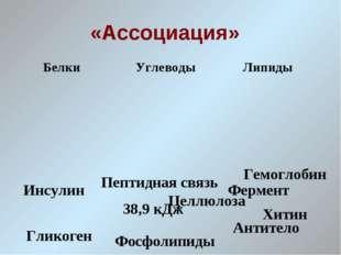 «Ассоциация» Инсулин Гликоген Антитело 38,9 кДж Фермент Целлюлоза Гемоглобин