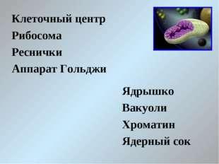 Клеточный центр Рибосома Реснички Аппарат Гольджи Ядрышко Вакуоли Хроматин Яд