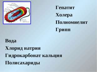 Гепатит Холера Полиомиелит Грипп Вода Хлорид натрия Гидрокарбонат кальция Пол