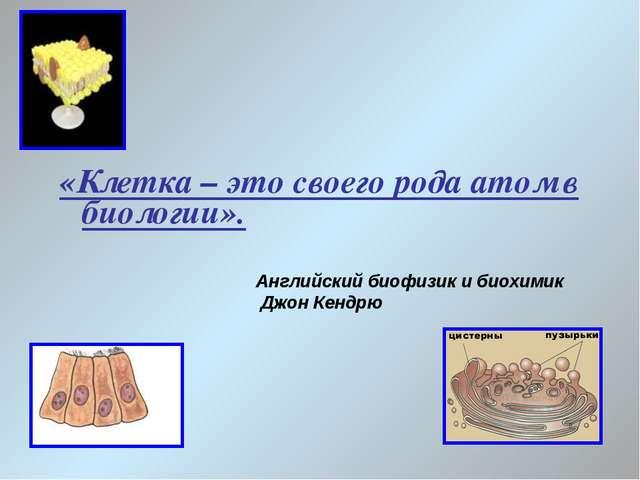 «Клетка – это своего рода атом в биологии». Английский биофизик и биохимик Дж...