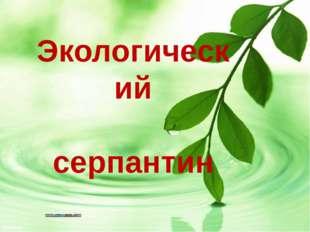 Экологический серпантин