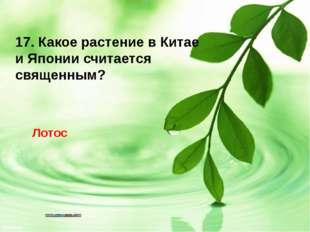 17. Какое растение в Китае и Японии считается священным? Лотос