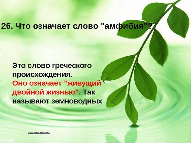"""Это слово греческого происхождения. Оно означает """"живущий двойной жизнью"""". Т..."""