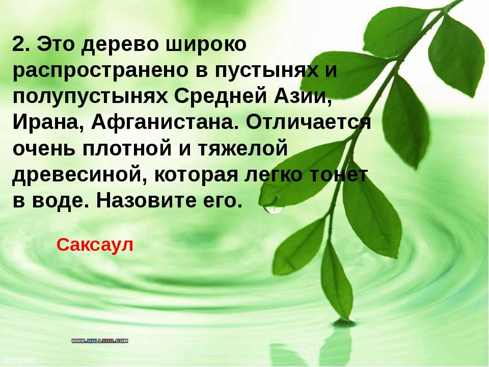 2. Это дерево широко распространено в пустынях и полупустынях Средней Азии, И...