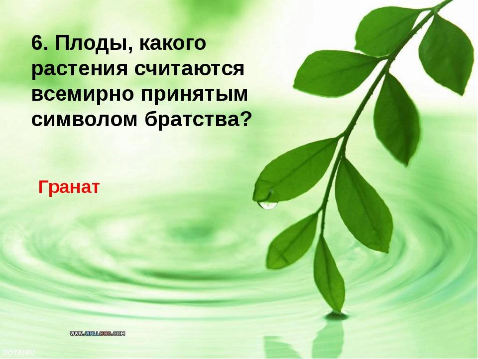 Гранат 6. Плоды, какого растения считаются всемирно принятым символом братства?