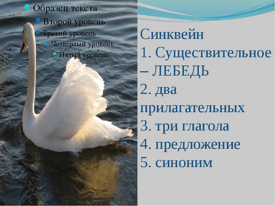 Синквейн 1. Существительное – ЛЕБЕДЬ 2. два прилагательных 3. три глагола 4....