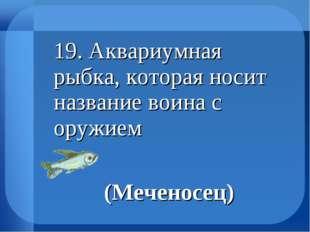 19. Аквариумная рыбка, которая носит название воина с оружием (Меченосец)