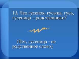 13. Что гусенок, гусыня, гусь, гусеница – родственники?  (Нет, гусеница -