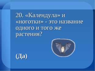 20. «Календула» и «ноготки» - это название одного и того же растения?