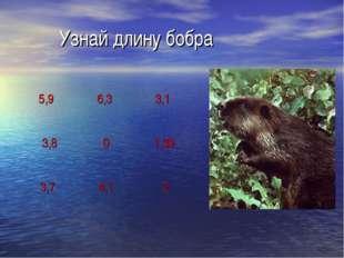 Узнай длину бобра 5,9 6,3 3,1 3,8 0 1,39 3,7 4,1 2