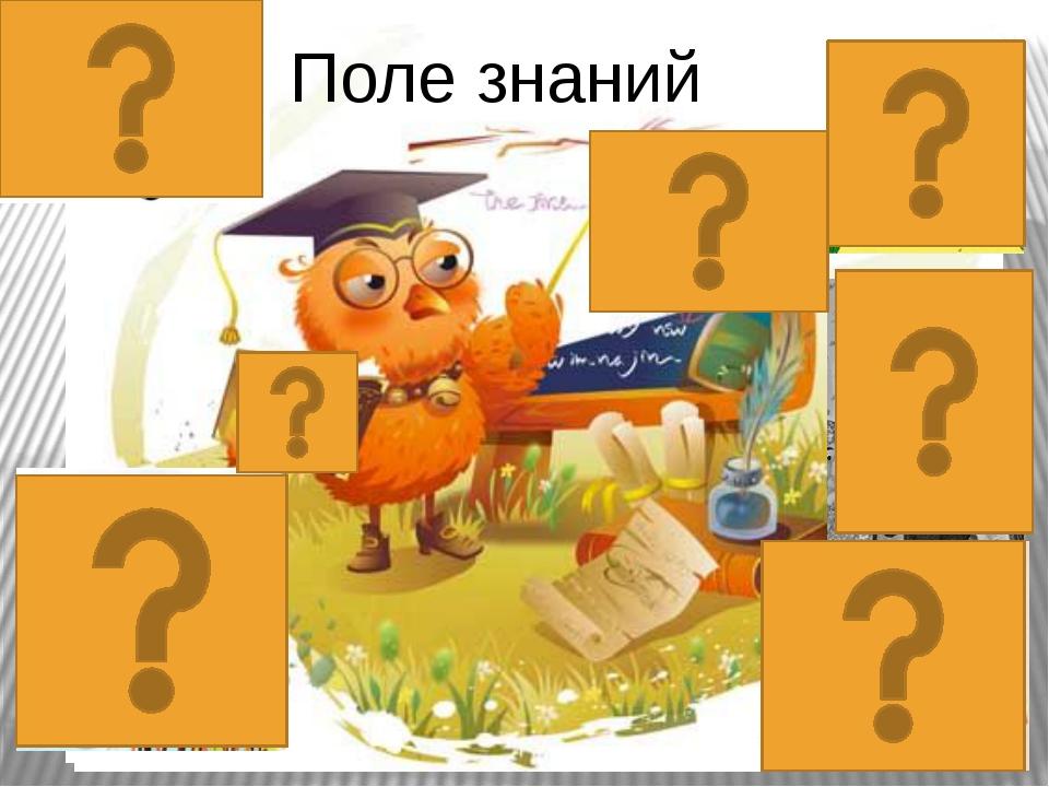 Поле знаний Что хорошо развито у человека,который все примечает?