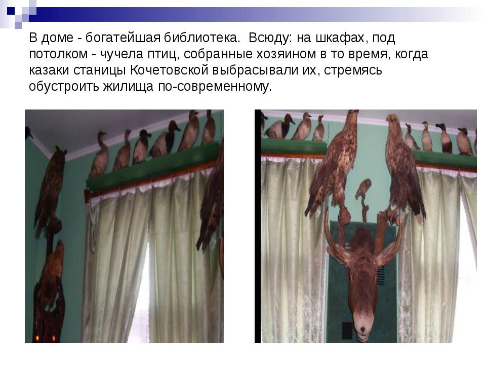 В доме - богатейшая библиотека. Всюду: на шкафах, под потолком - чучела птиц,...