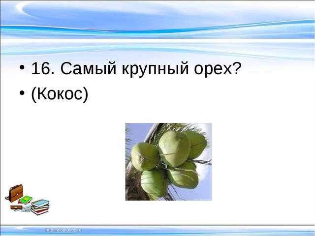 16. Самый крупный орех? (Кокос)