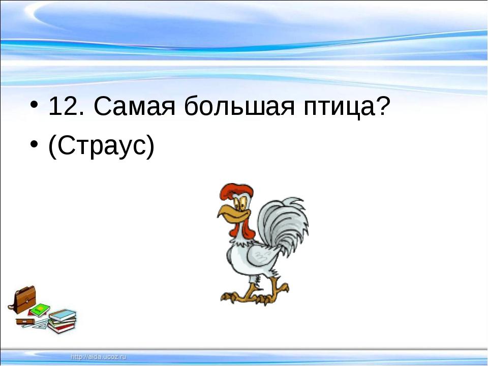 12. Самая большая птица? (Страус)